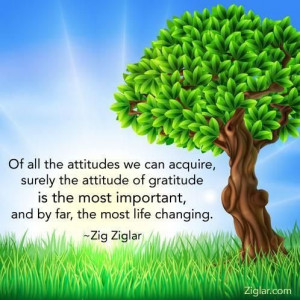 Attitude of Gratitude...