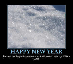happy-new-year-funny-quote- snow storm