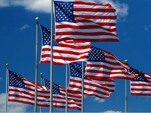 ... to pass a budget amendment to make a substantial U.S. flag purchase