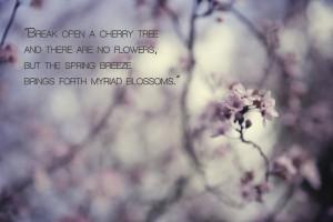 Spring Cherry Blossom Poem