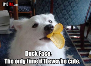 duck face win dog pringles