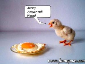 chicken soup funny joke cartoon funny joke pictures