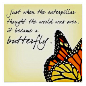 Butterfly Life Struggle Inspirational Quotes Poster