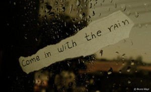 cute, lights, love, photography, quote, quoted, rain, taylor swift ...
