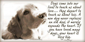 ... Most Beautiful #Dog #Death #Quotes That Will Bring Tears To Your Eyes