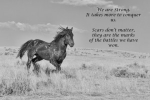 Battle Scars Inspirational Quote, Breast Cancer, Wild mustang - Fine ...