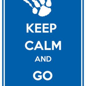 Kentucky Wildcats Keep Calm