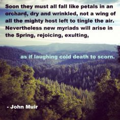 John Muir Quote www.lovehealsus.net More