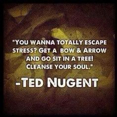 Ted Nugent More