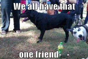 We all have that one friend We all have that one friend