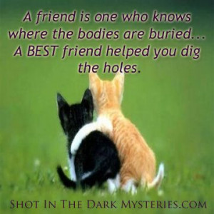 quotes Hilarious Quotes, Best Friends Quotes, Quotes Best Friends ...