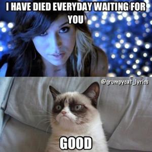 Grumpy Cat Quotes Titanic Grumpy cat