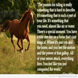 Quotes About Riding Horses