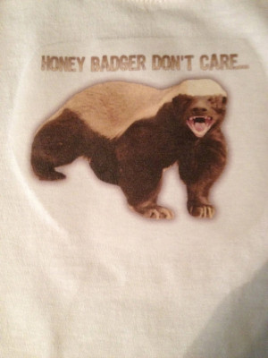 Honey Badger Don't Care - funny sayings on tshirt, onesie, Infant Tee ...