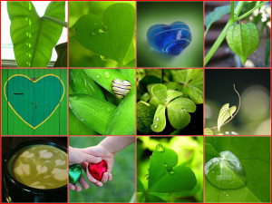 """To quote Kermit the Frog, """"It's not easy being green."""""""