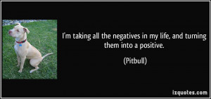 ... the negatives in my life, and turning them into a positive. - Pitbull