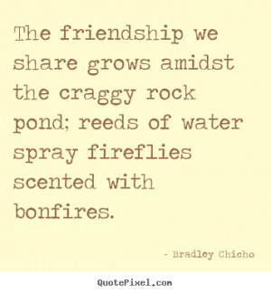 Create graphic picture quotes about friendship - The friendship we ...