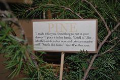 ... Botanical Themed party - Pine - Johanna Mason (Mockingjay quote)) More