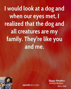 Love Dog Like Family Quote
