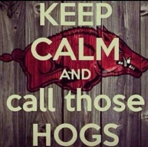 Arkansas Razorbacks #WPS #GOHOGS
