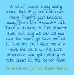 ... quote from the movie harold and maude more quotes worth wonder quotes