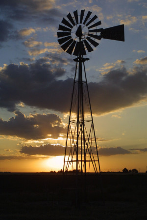 windmill, ranchers have been using wind energy to water calves for ...