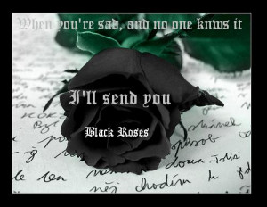 Black Roses by ThatAvengedKid