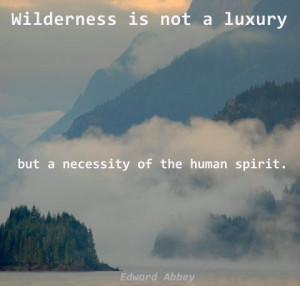 Edward Abbey quote - wilderness