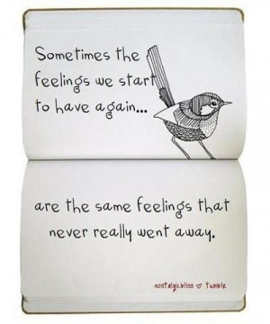 all about love, bird, dichos, feelings, feelings quotes, illustration ...