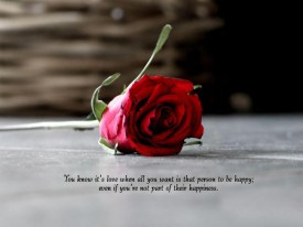 motivational-quote-about-love-and-the-picture-of-red-rose-motivational ...