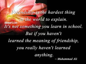 ... the meaning of friendship, you really haven't learned anything