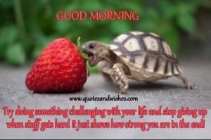 Morning quotes for colleagues, Good morning wishes for office and work ...