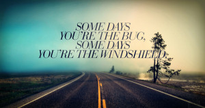 Some days you're the bug, some days you are the windshield.