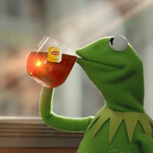 Kermit The Frog Drinking Tea   Meme Generator