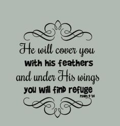 He will cover you with his feathers and under his wings you will find ...