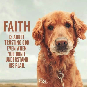 Love this quote (and the puppy!)