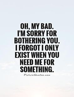 ... bad i m sorry for bothering you i forgot i only exist when you need me