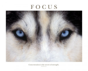 Motivational Quotes About Focus
