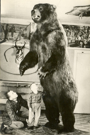 Crawford Grayling Fred Bear Museum Bear