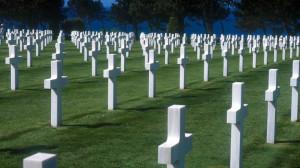 Contemplating the war dead