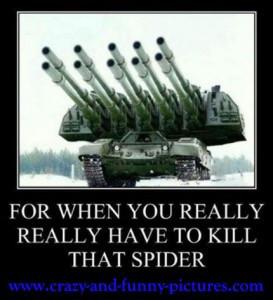 Funny Spider Pictures Quotes