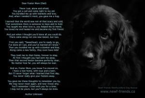 Dear Foster Mom (Dad)