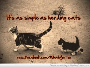 herding_cats-347832.jpg?i