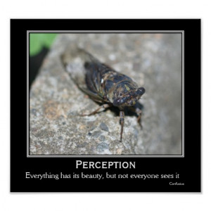 File Name : perception_beauty_cicada_motivational_quote_poster ...
