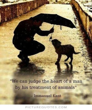 quotes about animals love it is amazing how much love pet quotes love ...