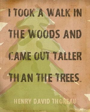 ... in the woods and came out taller than the trees.
