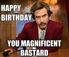 ... -birthday-memes-anchorman-8   Funny Pictures tumblr quotes ... More