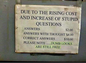 Increase Of Stupid Questions