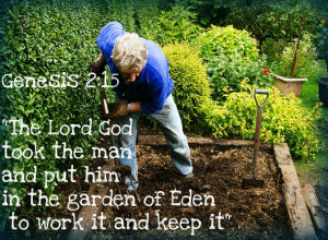the lord god took the man and put him in the garden of eden to work it