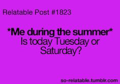 funny summer quotes images - Google Search